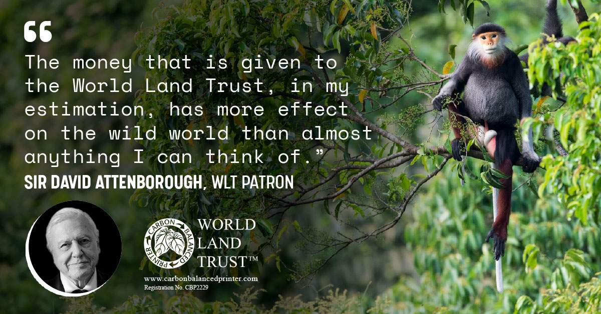 Who are The World Land Trust and why do we Partner with them?