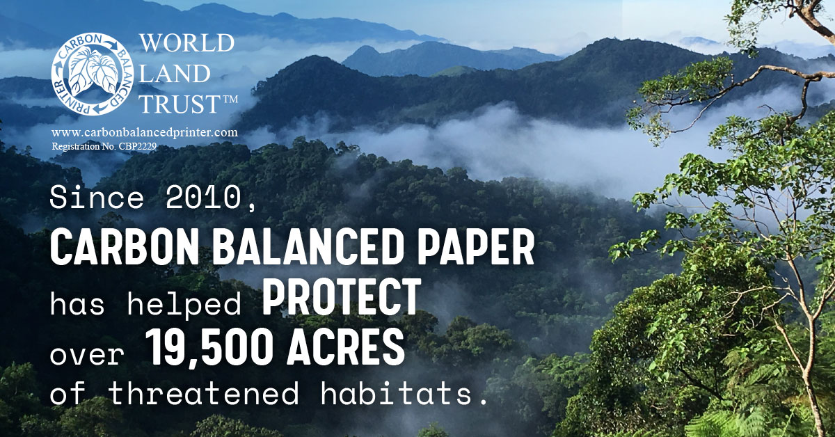 What is Carbon Balanced Paper and why do we use it?